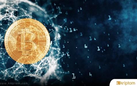 100 Bitcoin Tutan Adres Sayısındaki Artış Boğaya mı İşaret?