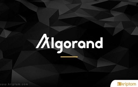 Algorand Foundation, 265 Bin Dolara Kadar Fon Desteği İle Hızlandırıcı Programı Başlattı