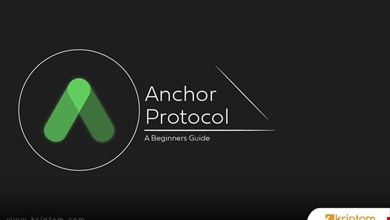 Anchor Protocol (ANC) Nedir? İşte Tüm Ayrıntılarıyla Kripto Para Birimi ANC Coin