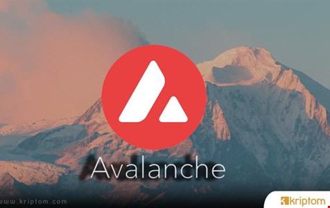 Avalanche (AVAX) Fiyatının Bu Ay %200 Artmasının 3 Nedeni