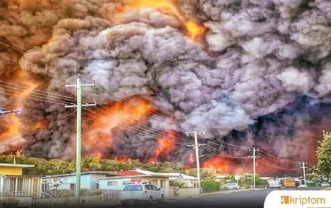 Avustralya Orman Yangınlarına Yardım Etmek İçin Bitcoin Bağış Adresi Açıldı