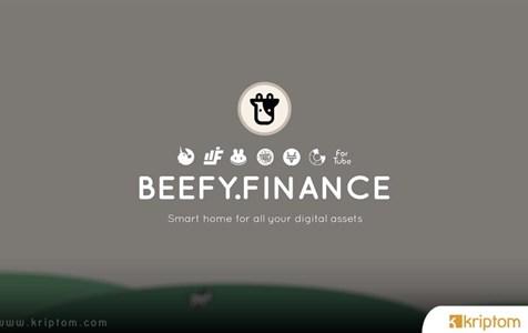 Beefy.Finance (BIFI) Nedir? İşte Tüm Ayrıntılarıyla Kripto Para BIFI Token