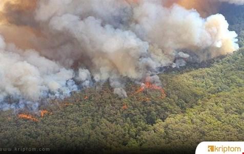 Binance Borsası Avustralya Orman Yangınıyla Mücadele İçin 1 Milyon Dolarlık BNB Bağışladı