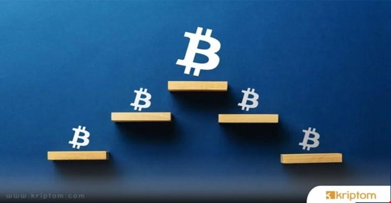 Bitcoin Bir Piramit Şeması mı? - Ünlü Ekonomist Nedenini Açıklıyor