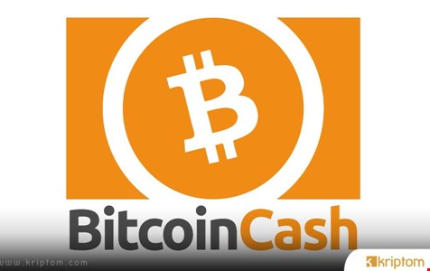 Bitcoin Cash Direnci Zorluyor