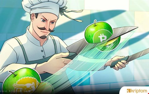 Bitcoin Cash ve BSV Hash Güçleri BTC Yarılanmasından Sonra Yükseldi