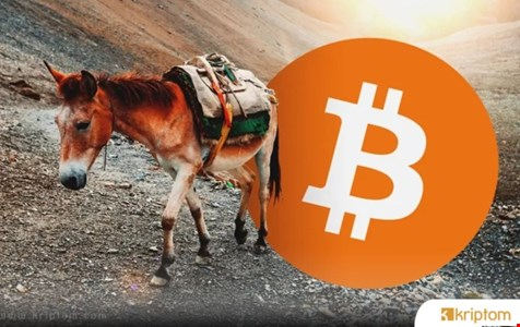 Bitcoin Dolandırıcıları Yeni Yöntemler Keşfediyor – İşte Yapılanlar