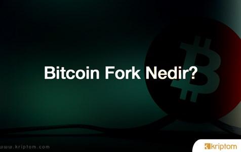 Bitcoin Çatallanması (Fork) Nedir?