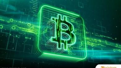 Bitcoin Google aramalar ile Bitcoin fiyatları arasında etkileşim var mı?