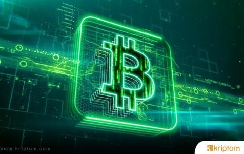 Google aramaları ile Bitcoin fiyatları arasında etkileşim var mı?