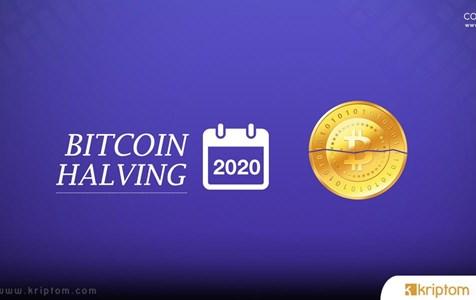 Bitcoin Halving: Balinalar Hodling Aşamasında mı?