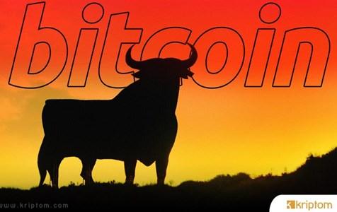 Bitcoin'in Bir Boğa Piyasasında Olmasının 3 Nedeni