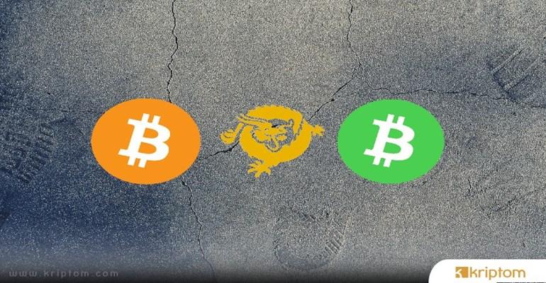 Bitcoin SV Hangisi: Dolandırıcılık Faaliyeti mi - Gerçek Bitcoin mi? Ünlü Yorumcu Cevapladı