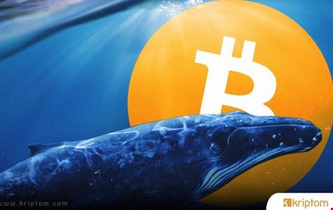Bitcoin ve Ethereum Balinaları Milyar Dolarları Taşıdı