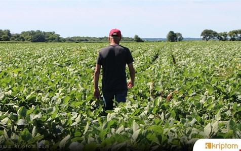 BM, Blockchain Teknolojisini Kullanarak Sürdürülebilir Tarım İçin Moğol Çiftçileriyle Birlikte Çalışıyor