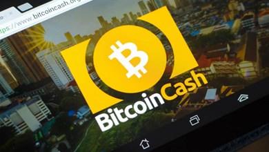 Bütün Borsalar Bitcoin Cash SV'yi Delist Edebilir