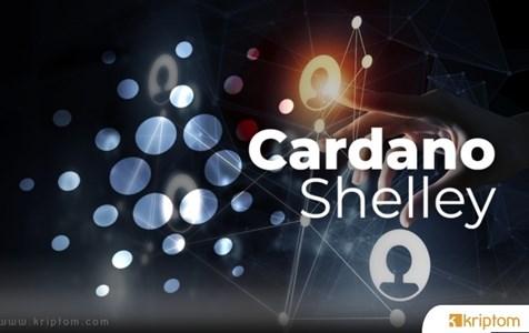 Cardana'dan Shelley Testnet 500 Stake Havuzunu Aştı
