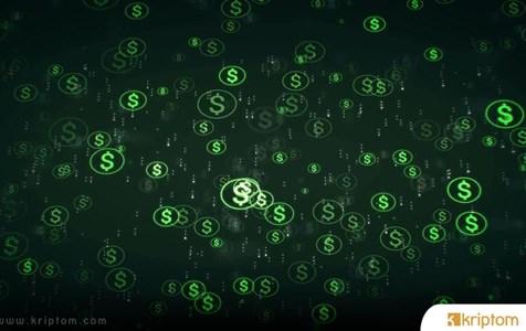 Dijital Dolar Fiat Türevi Değil; Ulusal Para Gibi Desteklenecek