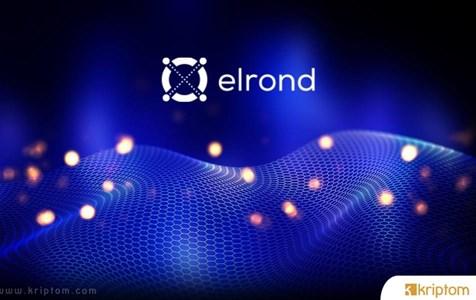 Elrond (EGLD) Nedir? İşte Tüm Ayrıntılarıyla Kripto Para EGLD Token