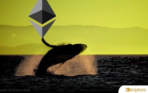Ethereum Balinalarından Milyon Dolarlık Hareketler! Neler Olacak?