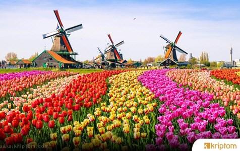 Hollanda'nın AMLD5 Uygulamasıyla Bu Kripto Para Şirketi Kapılarına Kilit Vuruyor