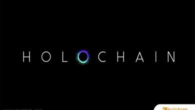 Holochain Rehberi: Holochain (HOT) Nedir, Holochain (HOT) Nereden Alınır?