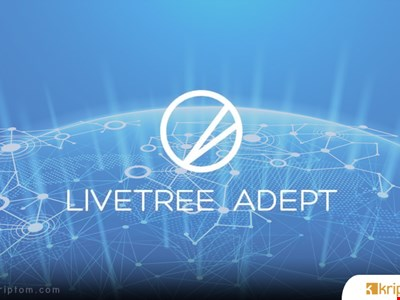 Livetree, TV ve filmler ile Blockchain