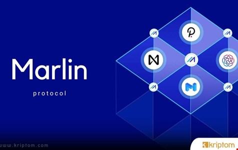 Marlin (POND) Nedir? İşte Tüm Ayrıntılarıyla Kripto Para POND Coin