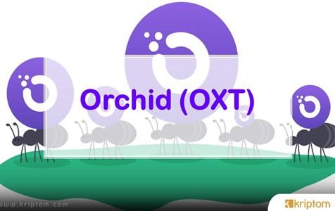 Orchid (OXT) Nedir? İşte Tüm Ayrıntılarıyla Kripto Para Birimi OXT Coin