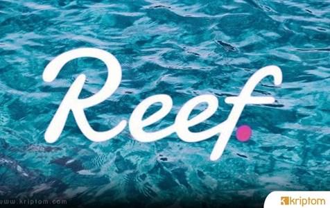 Reef Finance Nedir? REEF Token Nedir? İşte Tüm Detaylarıyla Reef Coin