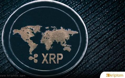 Ripple CTO'su, XRP Topluluk Üyesini Eleştirdi