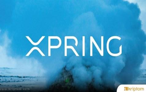 Ripple'den Xpring'ine Amerika'nın Önde Gelen İş Dergisinden Büyük Onur