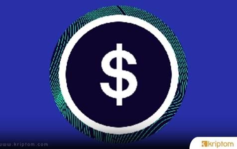 sUSD (SUSD) Nedir? İşte Tüm Ayrıntılarıyla Kripto Para Birimi SUSD Coin