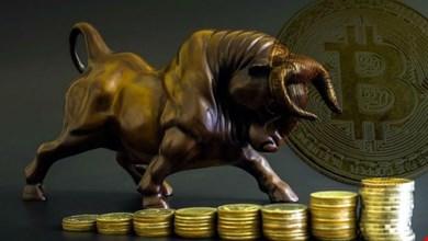 Ünlü Analiste Göre Bitcoin İçin Bir Sonraki Seviye 8.400 Dolar