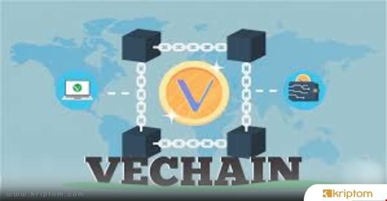 VeChain Fiyatı İlk Yüzdeki 99 Koinden Daha İyi Performans Sergiledi